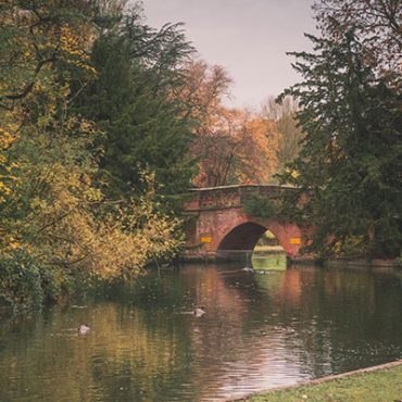 Cannon Hill Park image