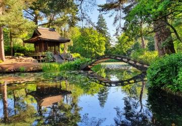 Tatton Park  image