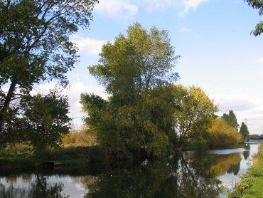 Tottenham Marshes image